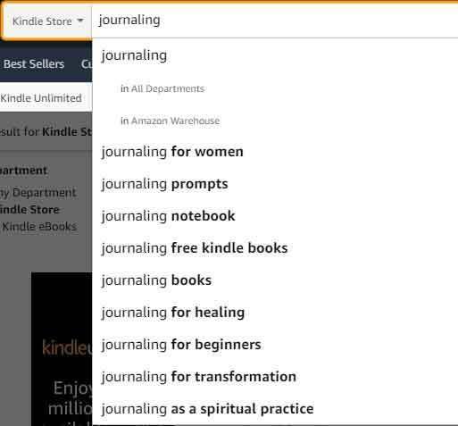 journaling-amazon